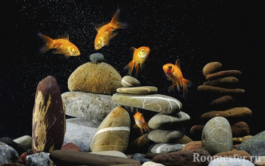 Aquarium decoration with stones