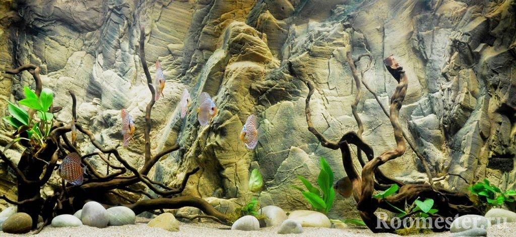 Aquarium decorative background