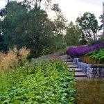 Каменные стены и разнообразные цветы