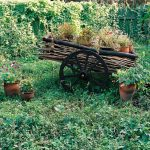 Тележка в саду
