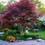 Каменные скамейка и светильник под деревом