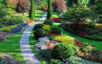 Дизайн сада — выбираем стиль и планировку