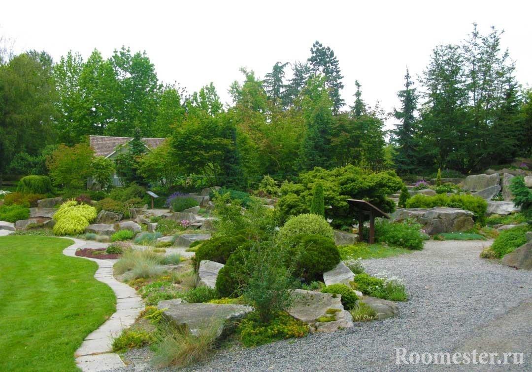 Кустарники и камни