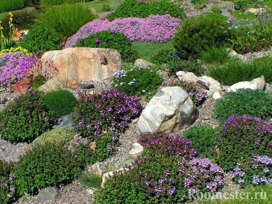 Интересное сочетание цветов и камней