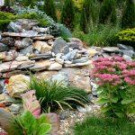 Горка из камней с растениями