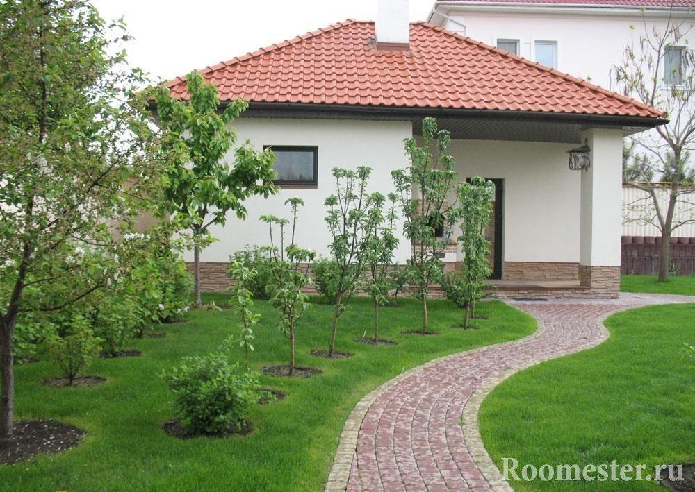 Деревья рядом с домом