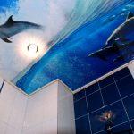 Дельфины на потолке