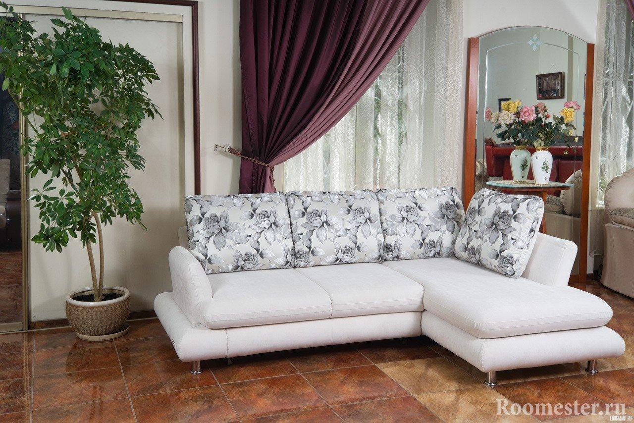 Комнатное дерево рядом с диваном