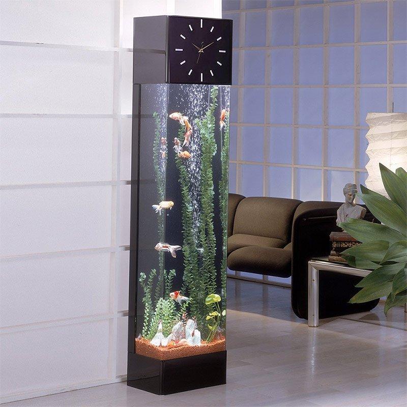 вам фото узких аквариумов участь жизни могла