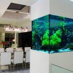 Перегородка с аквариумом в интерьере