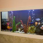 Стена с аквариумом