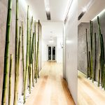 Бамбук в прихожей