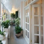 Цветы на закрытом балконе