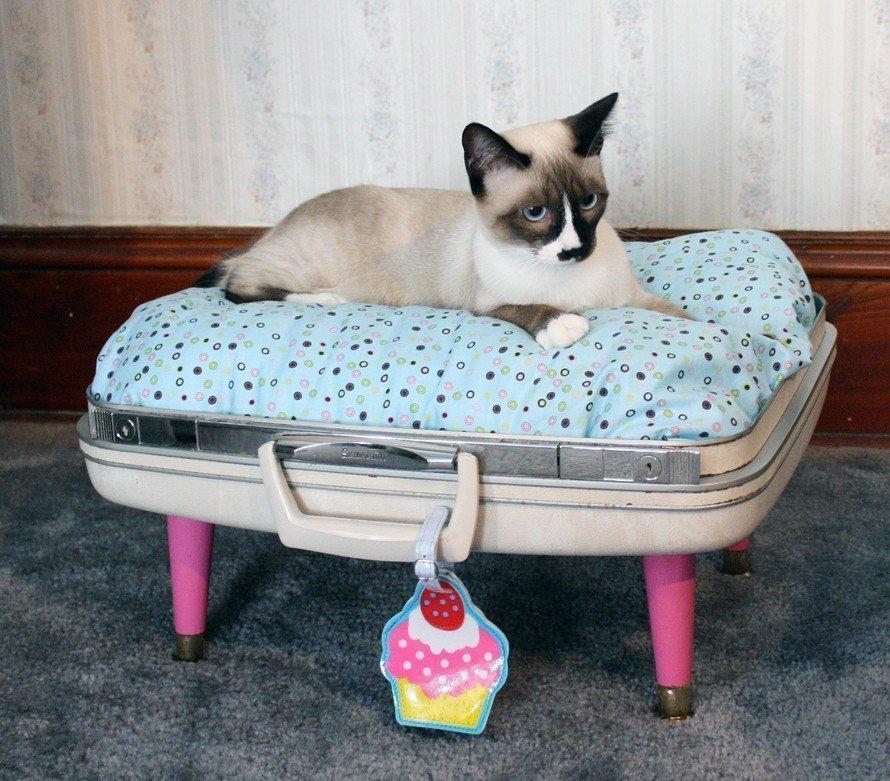 Лежанка для домашних питомцев из чемодана