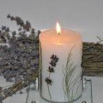 Растения на свече