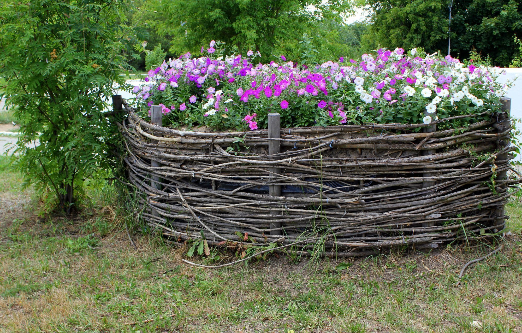 Плетеный забор для клумбы