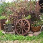 Клумба с колесом и бочкой