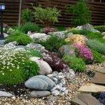 Экспозиция из камня и цветов