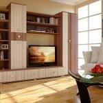 Стенка с телевизором в гостиной