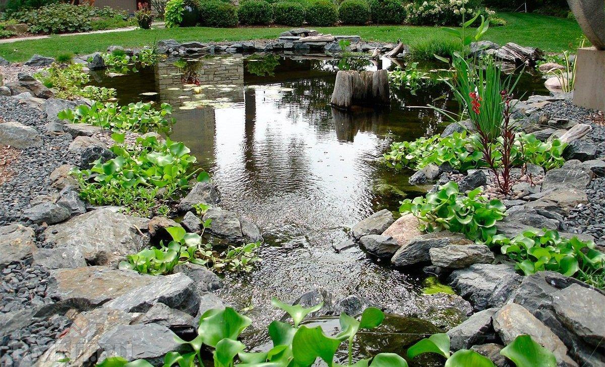 Декор водоема в саду