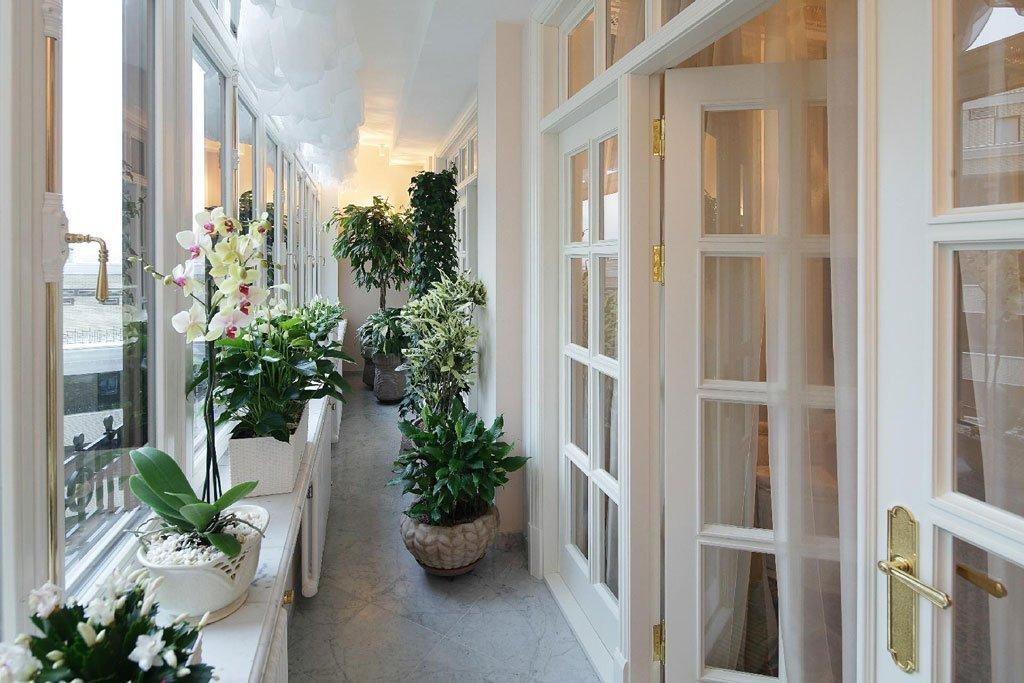 Оранжерея на закрытом балконе