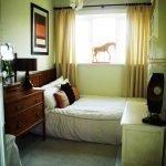 Оливковые стены в декоре комнаты