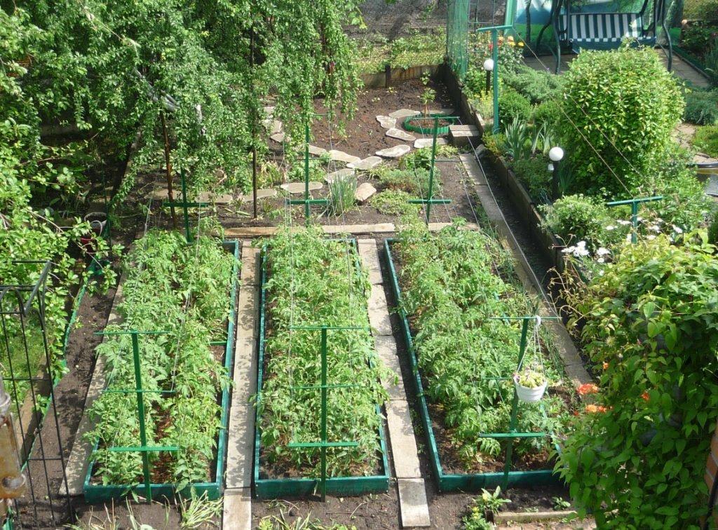 бутылочке интересную планирование сада и огорода с фото исключением является появление