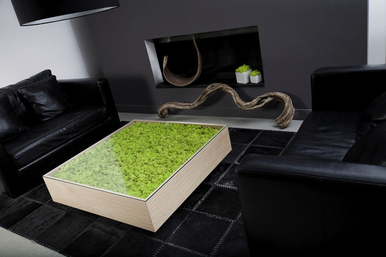 Мебель с элементами мха