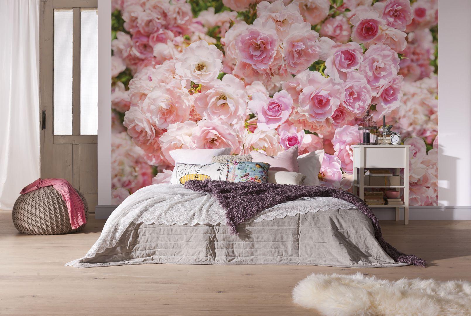 Обои гортензия, цветы, комната. Цветы foto 14