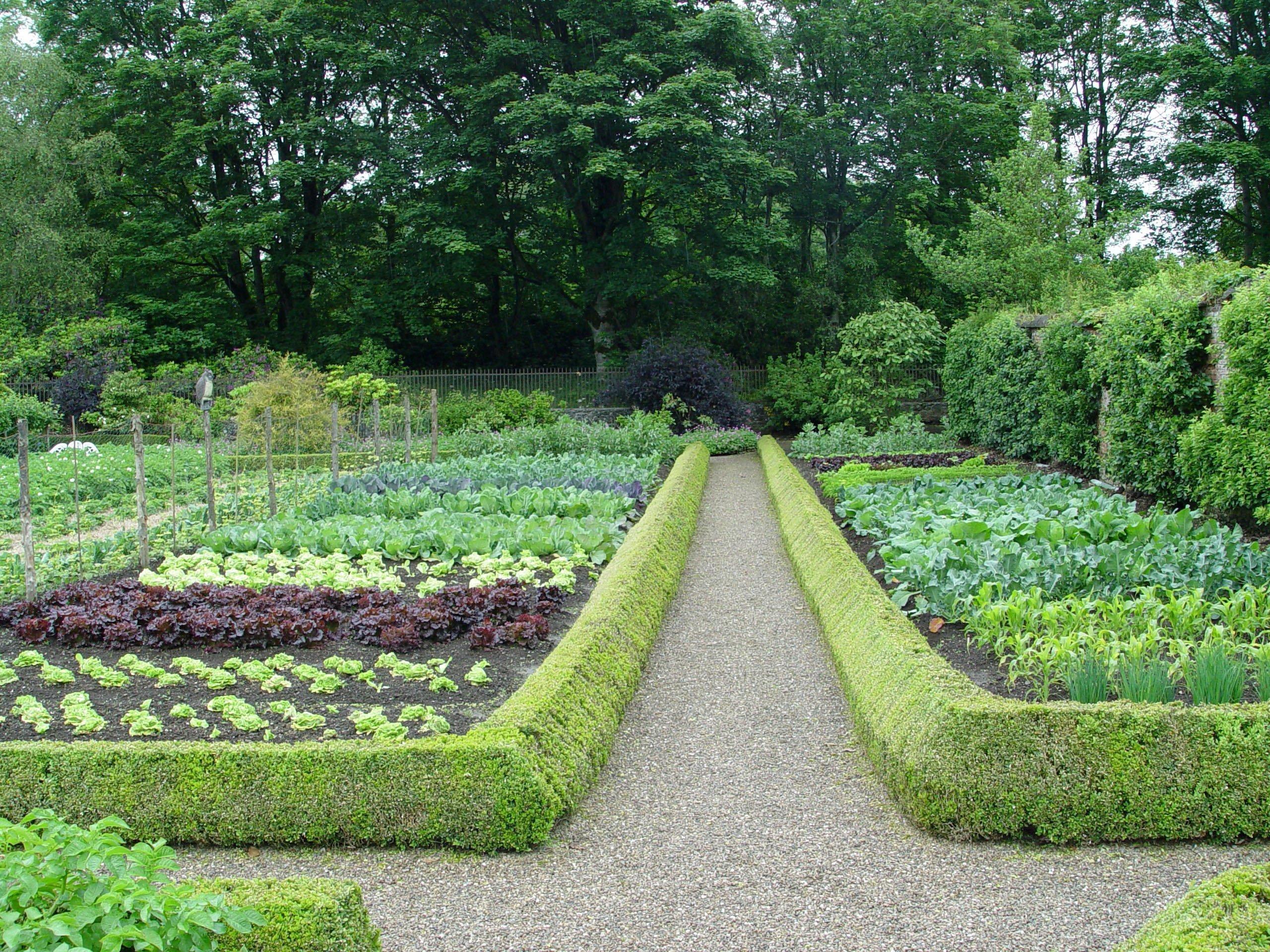 картинка красивого огорода еще меньше
