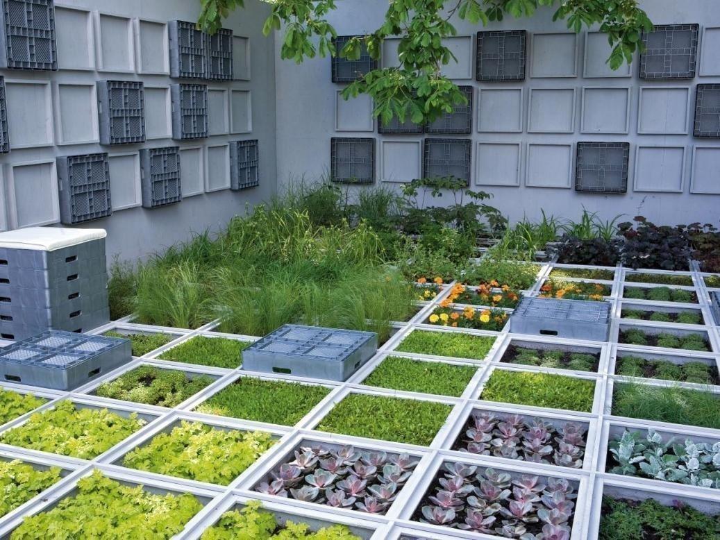 Дизайн огорода своими руками картинки фото фото 501