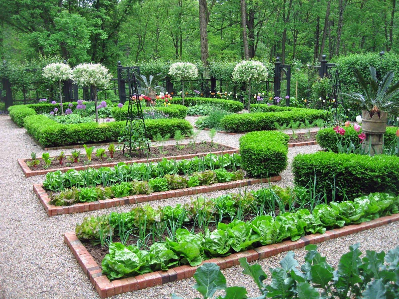 для картинка красивого огорода это