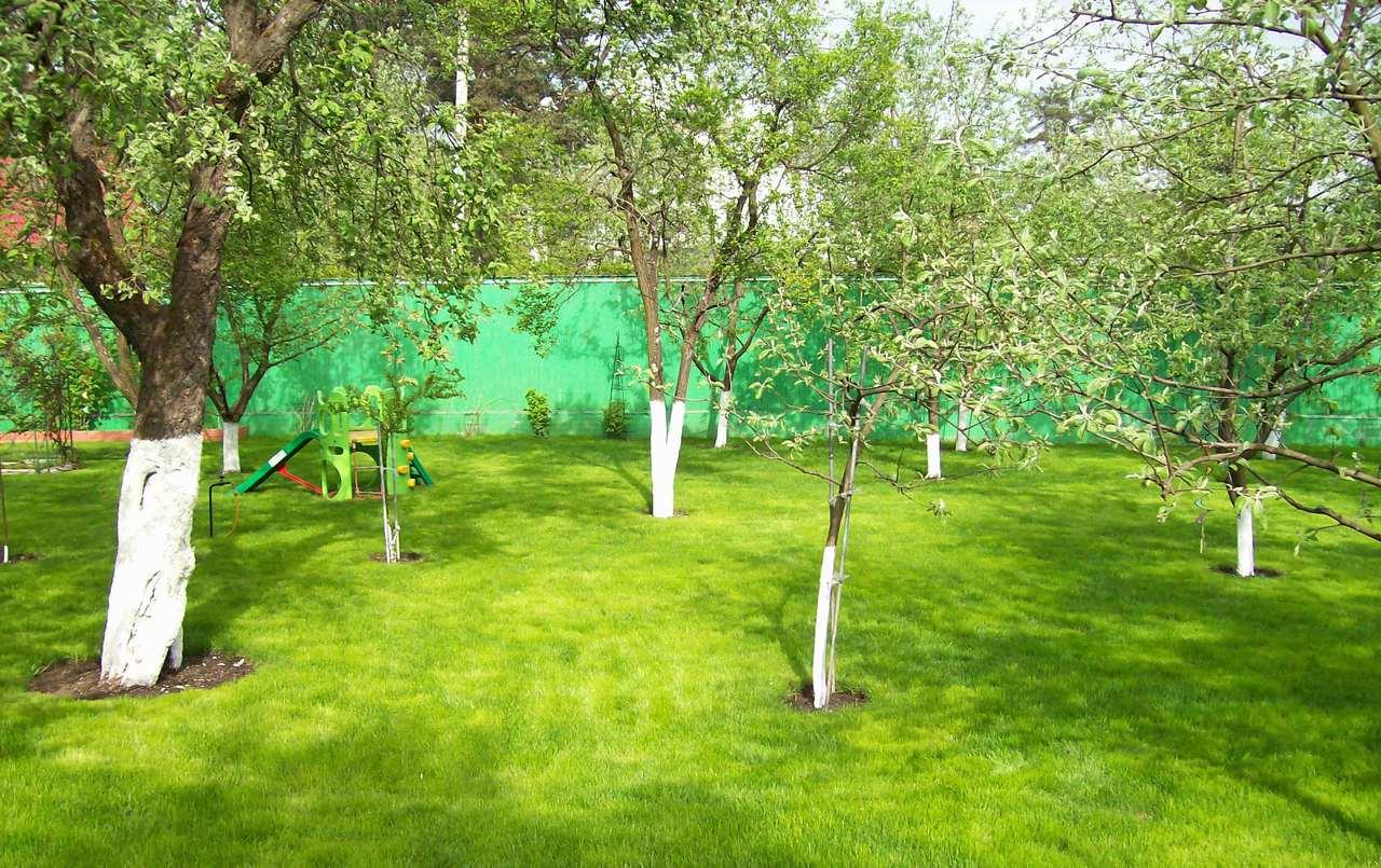 Сад на участке 12 соток