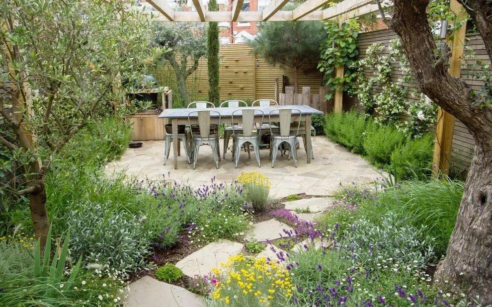 Декоративные растения в сельском саду