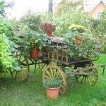 Повозка с цветами