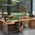 Офис с видом на парк