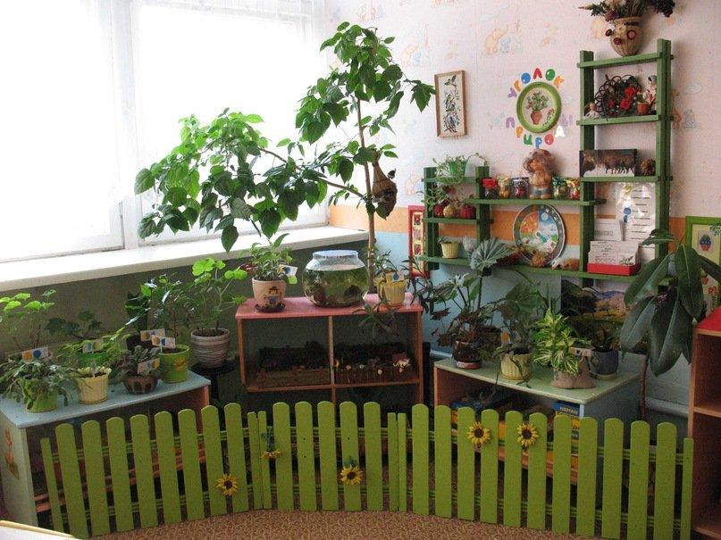 Живой уголок в детском саду