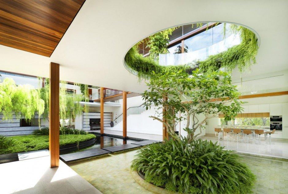Дерево в центре