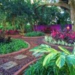 Цветы и растения в саду