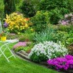 Оформление сада цветами