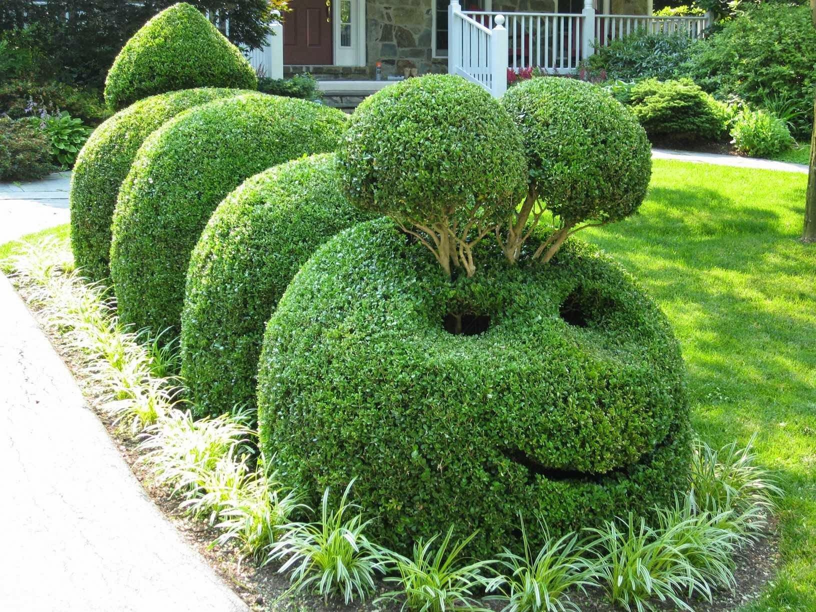 Гусеница из кустарника