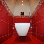 Red and white toilet design