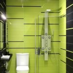 Green and black toilet design