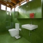 Green mosaic in the toilet