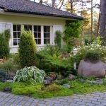 Сад под окнами