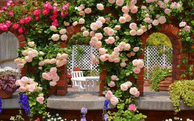 Розы в ландшафтном дизайне: виды и варианты украшения