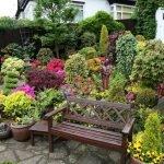 Горшки с цветами у скамейки