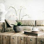 Орхидея на столике