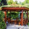 Озеленение крыши открытой беседки