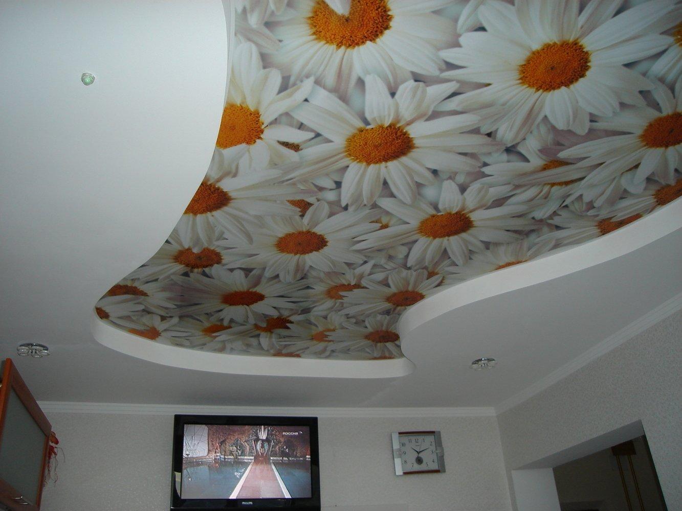 Натяжные потолки с фотопечатью ромашки
